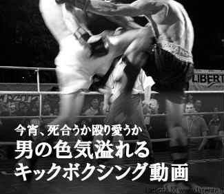 キックボクシング動画