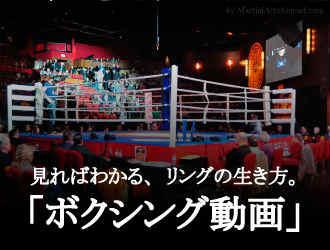 ボクシング動画